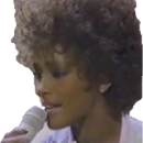 Whitney Houston All at once